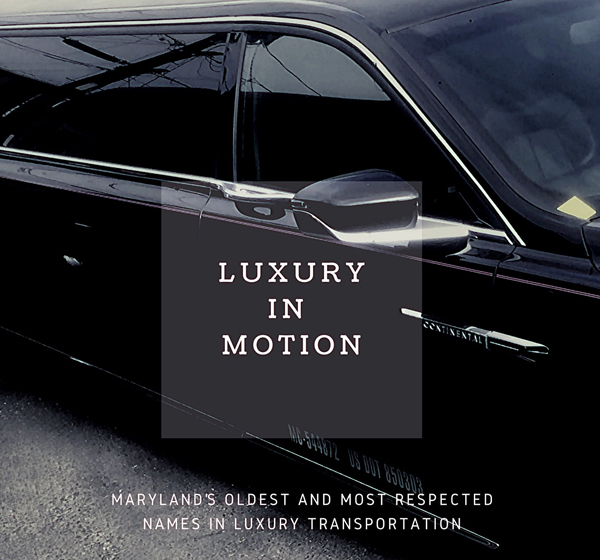 Image of American Limousines contact information
